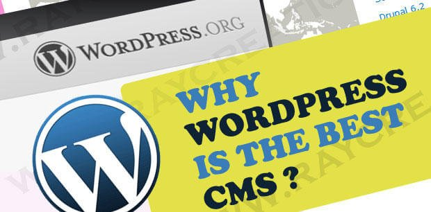 What Makes Wordpress Different Than Other Cms Platforms