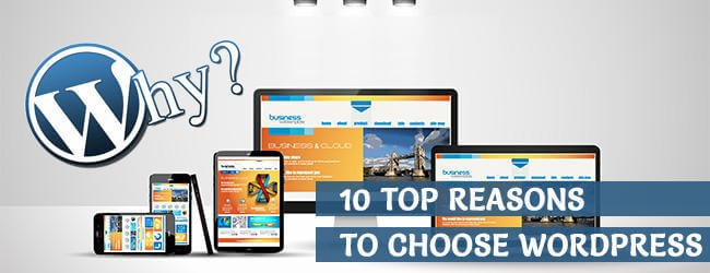 Top 10 Reasons Why To Choose Wordpress