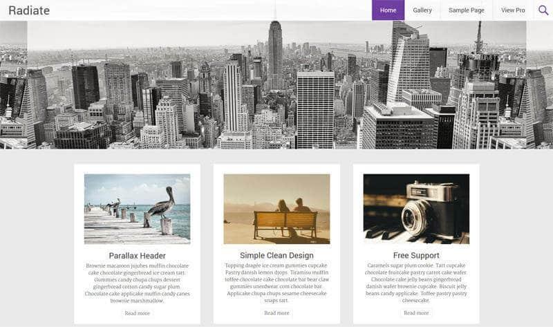 4-A-Free-Urban-WordPress-Theme-for-a-Blog