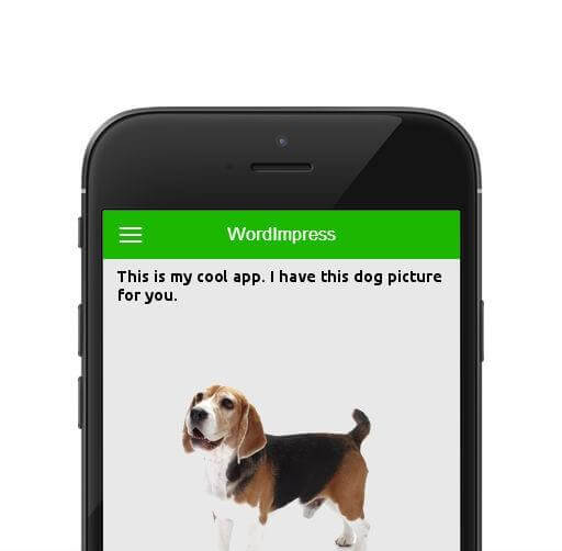 WordPress Mobile App 8