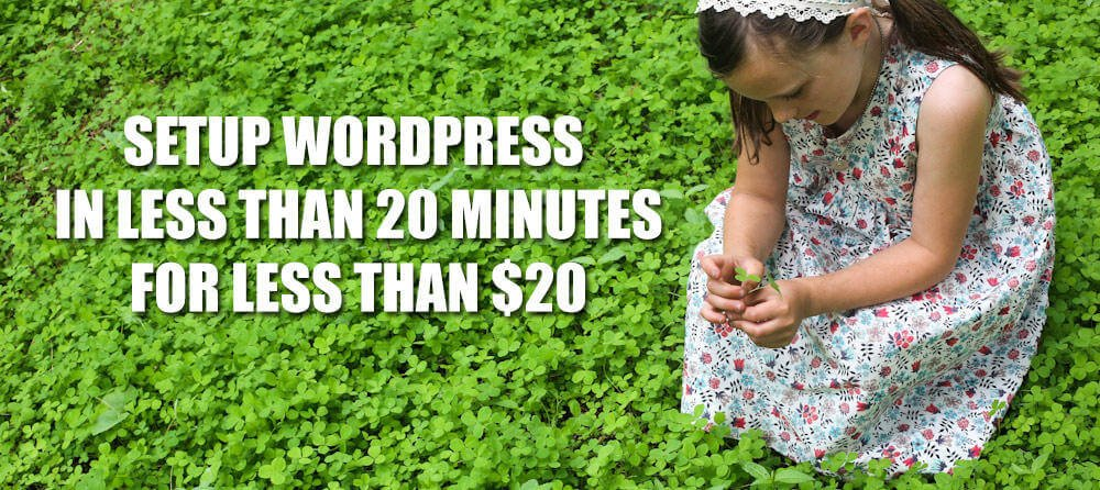 WordPress in Less Than 20 Minutes for Less Than $20