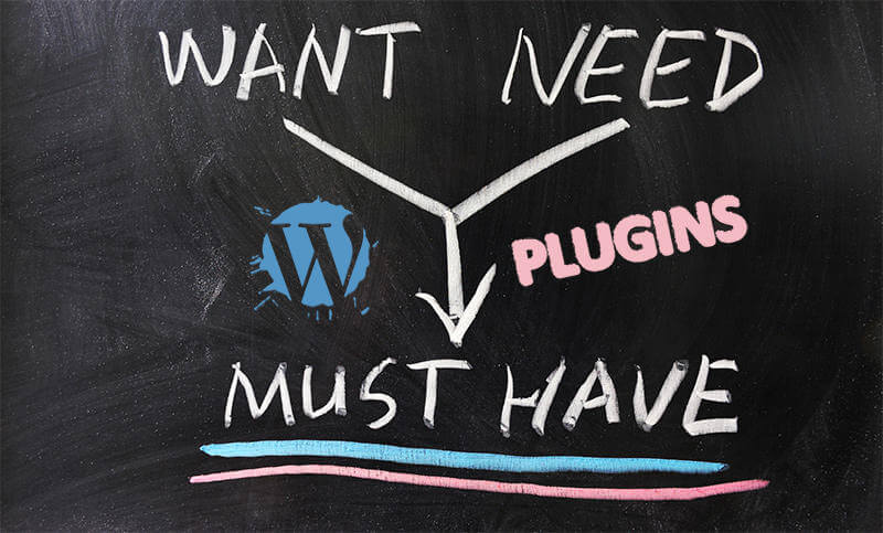 7 Must Have WordPress Plugin Types
