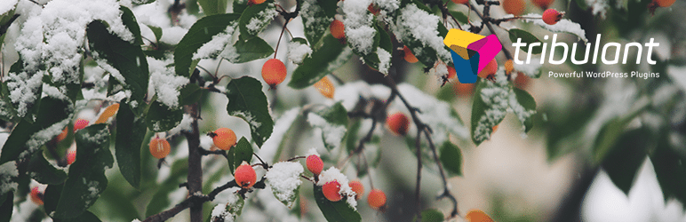 5 Free Snow Fall Effect Plugins For Your WordPress Site