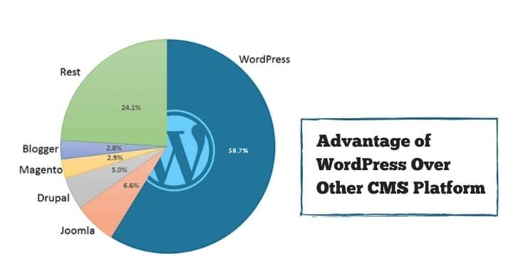 Top 5 Advantage Of The WordPress Cms Platform