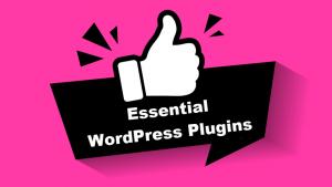 16 WordPress Business Plugins Every  Website Must Use